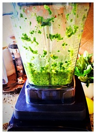 Green Sauce fresh from the blender