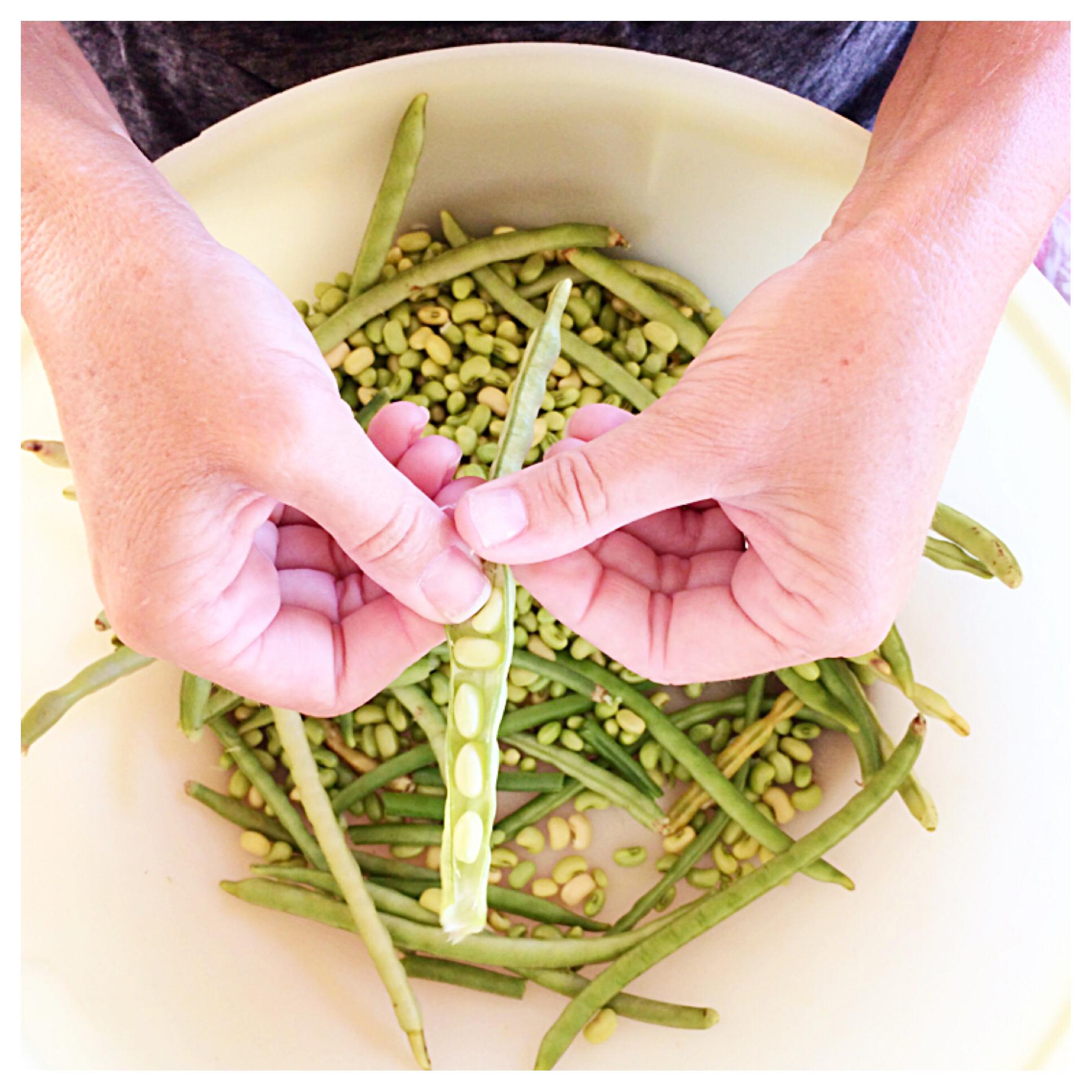 Shelling Peas.jpg