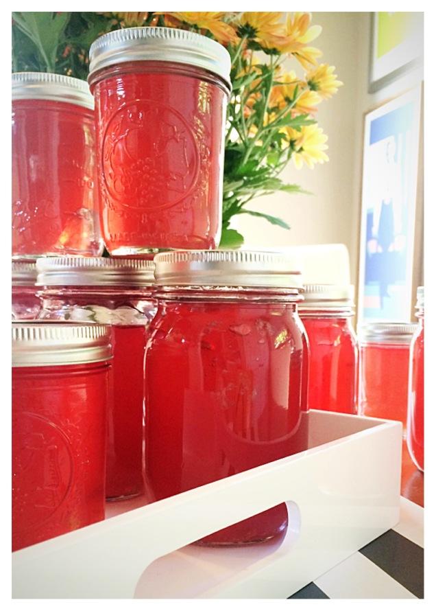 jars-of-muscadine-heaven